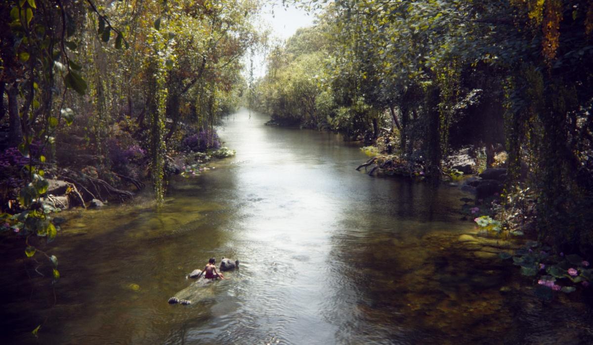 Кадр Книга джунглей / The Jungle Book