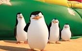 Пингвины Мадагаскара смотреть онлайн
