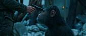 Планета обезьян: Война 2017 кадры