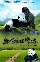 След панды / Xiong mao hui jia lu (2009)