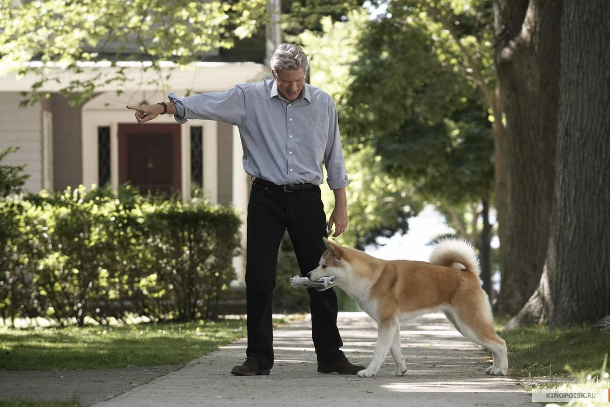 хатико-самый верный друг фото из фильма