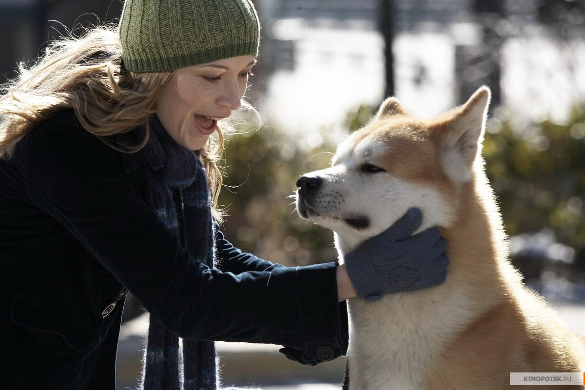 кадр №2 из фильма Хатико: Самый верный друг (2008)