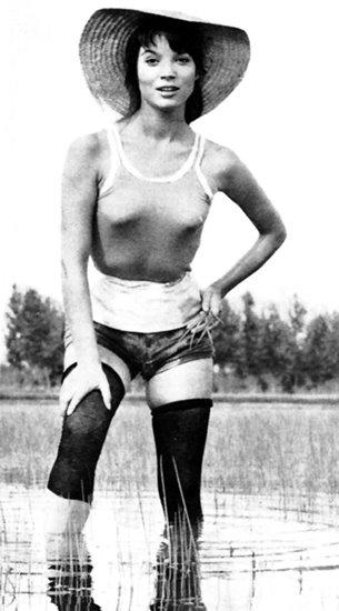 elsa martinelli attrice