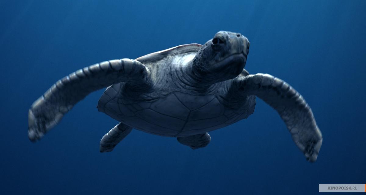 десяти морской динозавр картинка самые интересные обсуждаемые