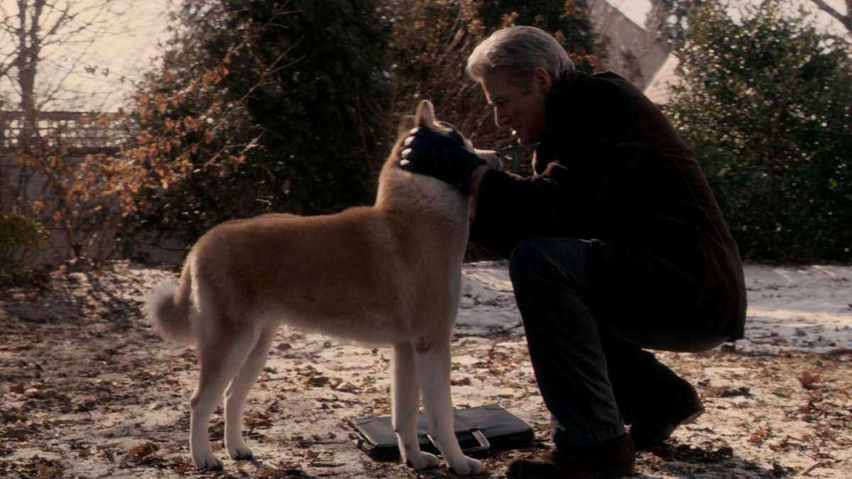Richard Gere played the role of the owner of Hachiko in a 2009 American film. Source: kinopoisk.ru