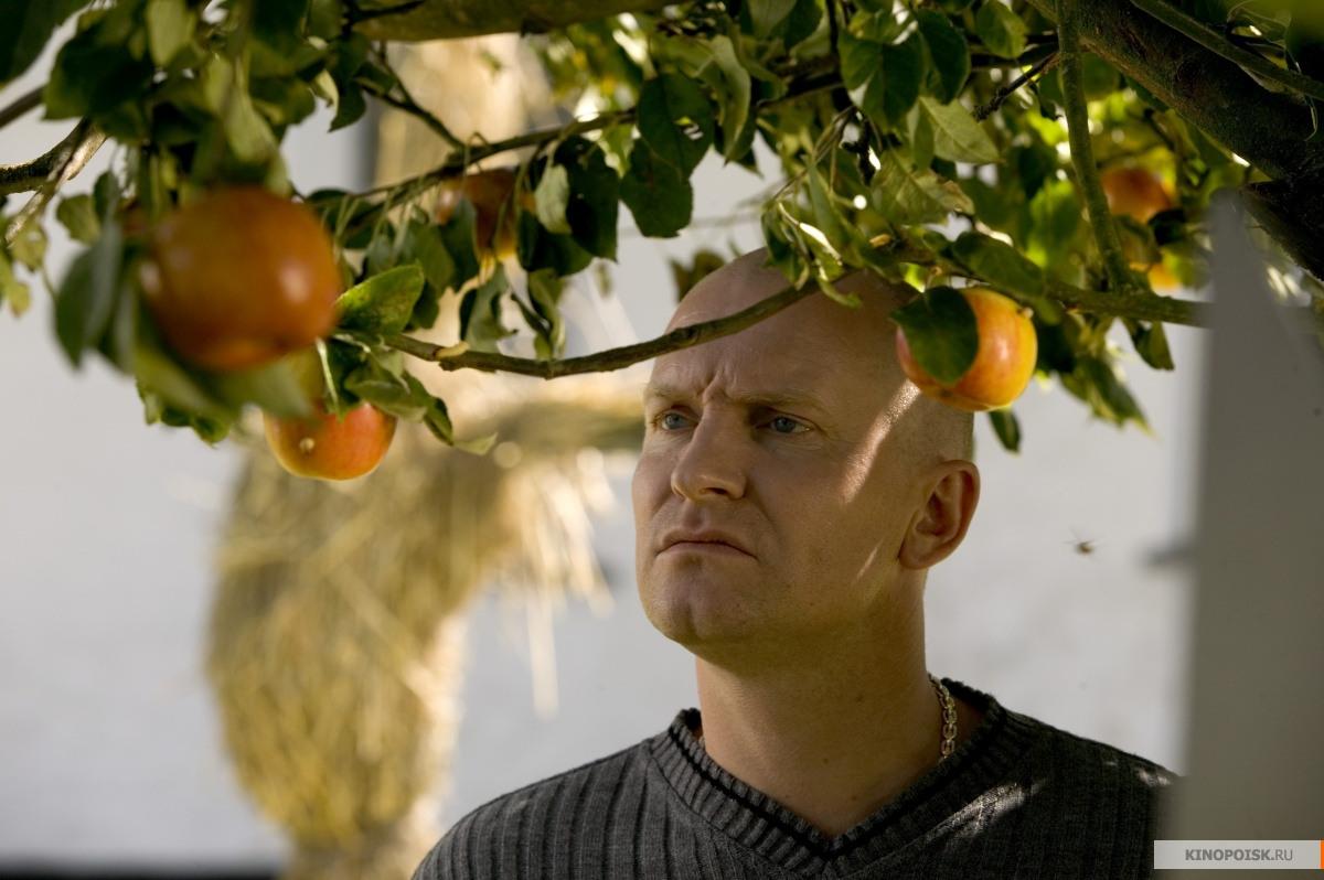 Адамовы яблоки / Adams æbler