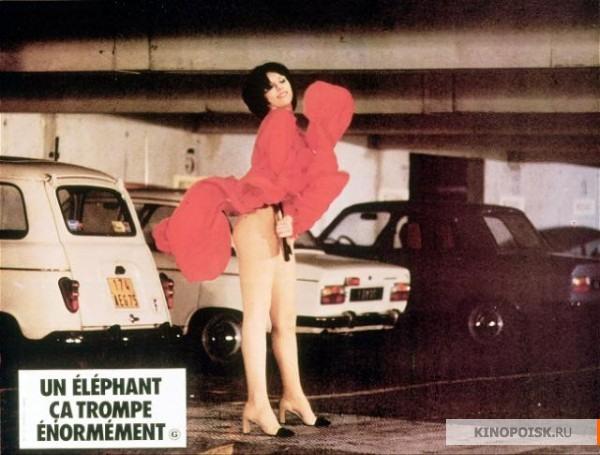Неверны бывают и слоны