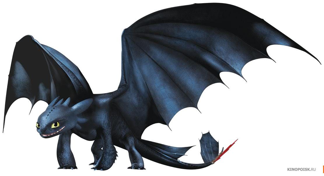 Любимого, картинки драконов из мультика как приручить дракона все драконы