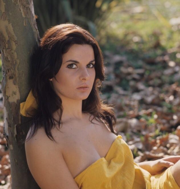 Simonetta Stefanelli nude 594