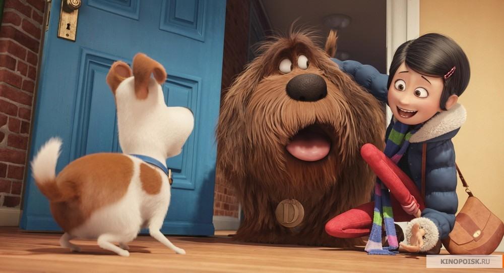 кадр №3 из фильма Тайная жизнь домашних животных (2016)