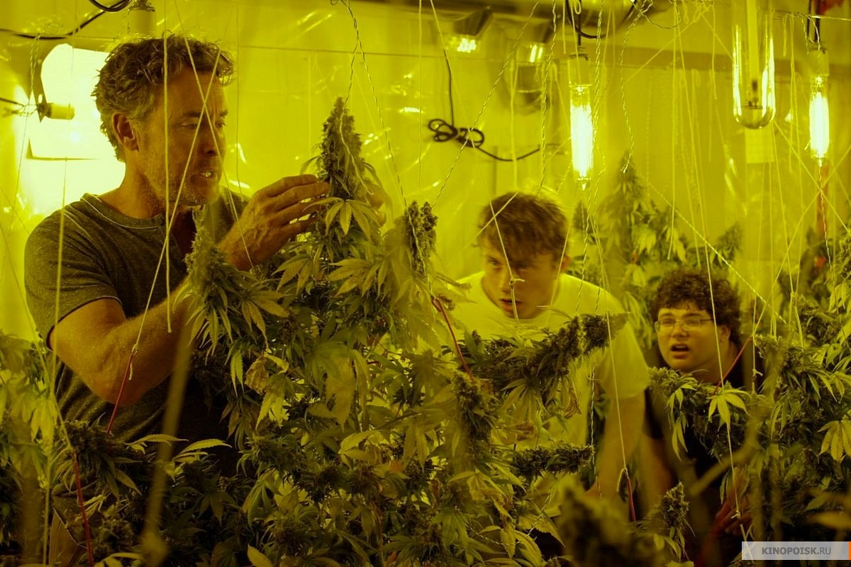 Фильм о том как 2 друга выращивали коноплю признаки марихуана