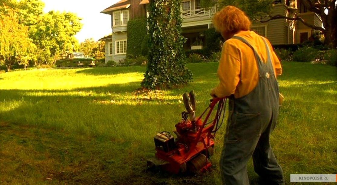 картинки про газонокосильщика советы увеличению скорости