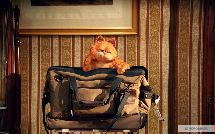 кадр №1 из фильма Гарфилд 2: История двух кошечек (2006)