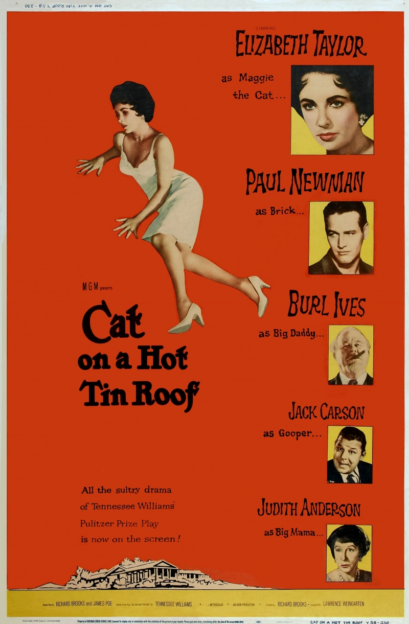 emotional repression of men through the actions of brick and his family in cat on a hot tin roof a p