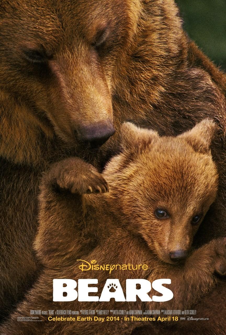 постер земля медведей тому