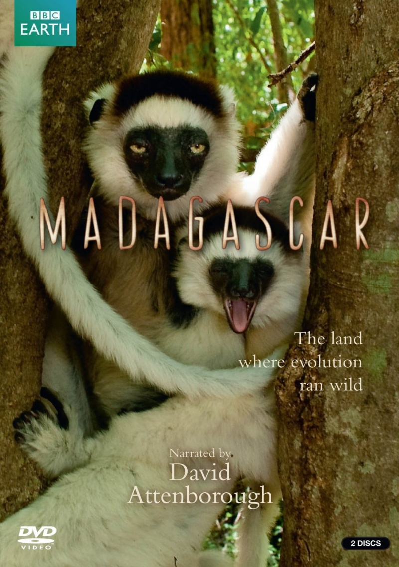 BBC: Мадагаскар  5 серия