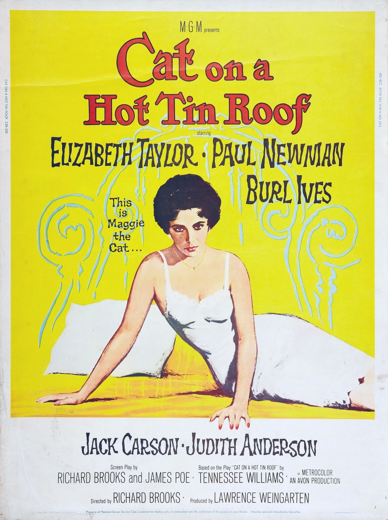the theme of isolation in cat on a hot tin roof by tennessee williams Two years ago, my husband and i decided our son should take piano lessons we told him that if he didn't like them he could quit when he turned 13 the stage directions from tennessee williams' cat on a hot tin roof is a syndicated columnist whose weekly advice column, ask the stage.