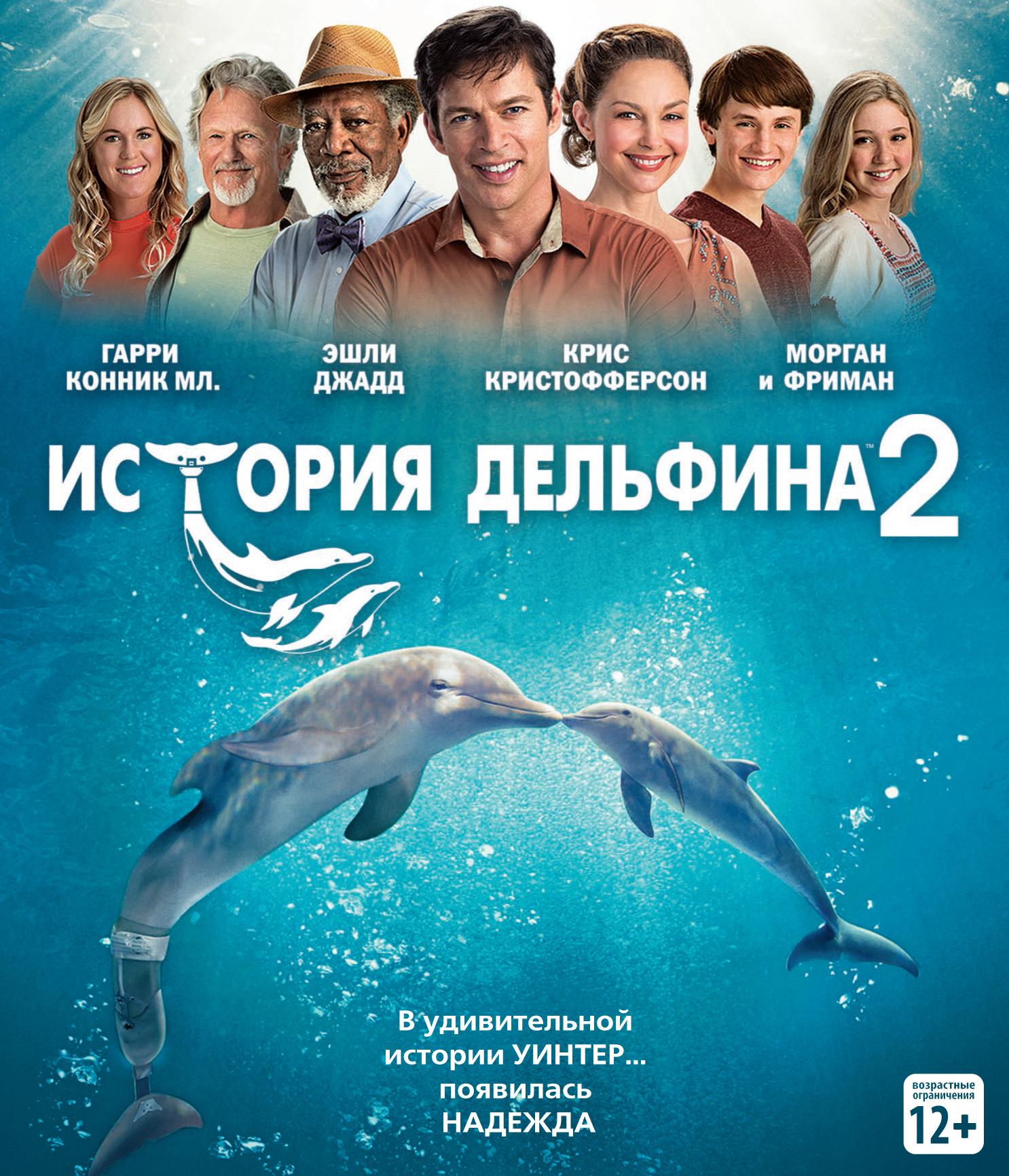 Фильм история дельфина картинки