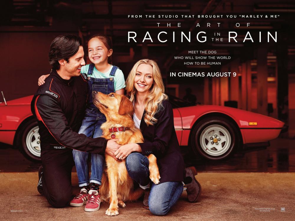 Resultado de imagem para art of racing in the rain poster