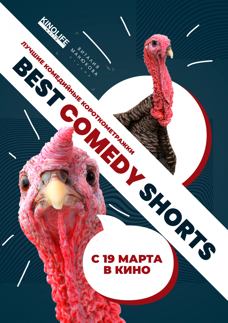 Best Comedy Shorts (2020)