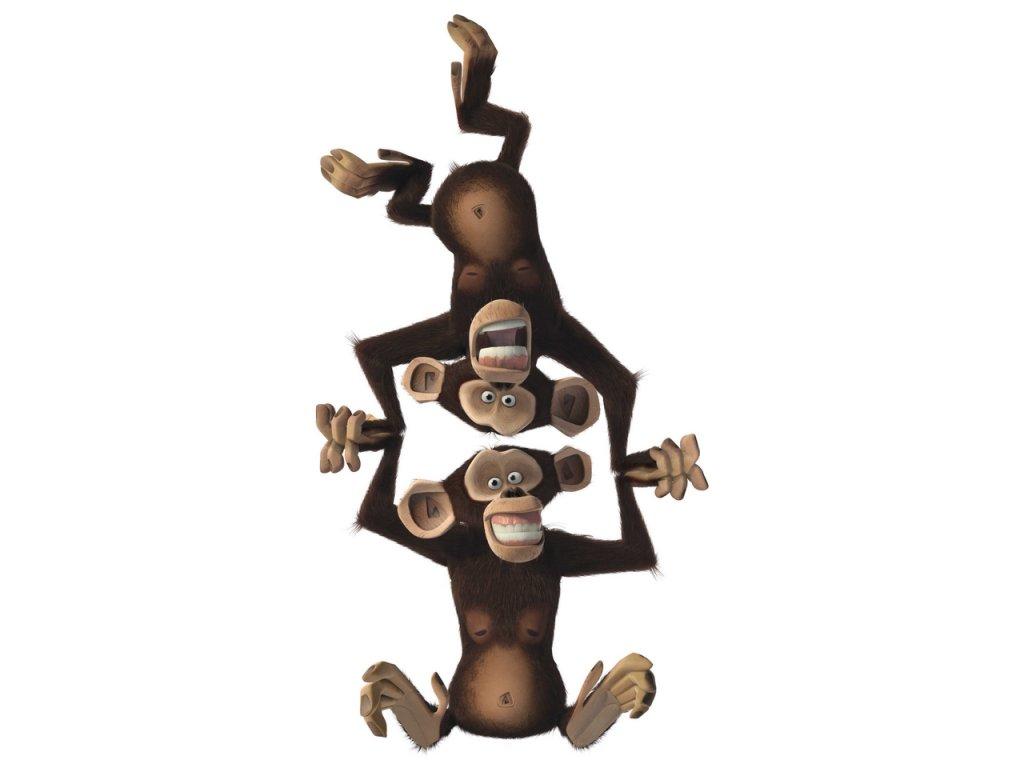 Игра мадагаскар скачать торрент бесплатно