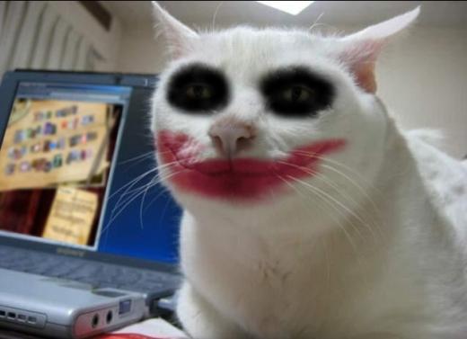 Кот улыбка картинка