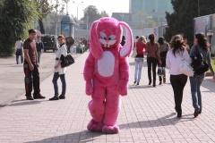 Сказ о розовом зайце