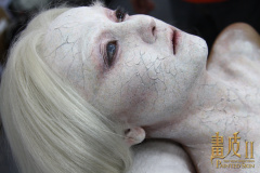 Раскрашенная кожа2