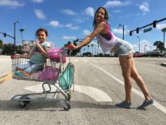 Проект Флорида