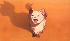 Возвращение кота