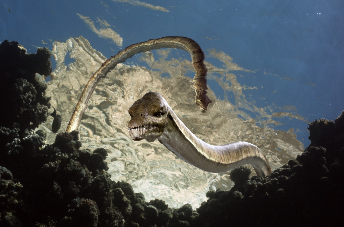 смотреть фильмы морские динозавры 3d путешествие в доисторический мир