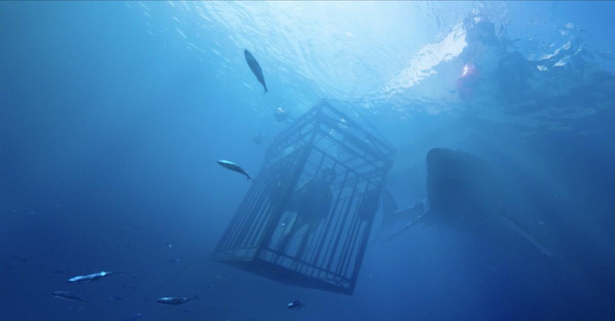 Синяя бездна 47 / Meters Down (2017)