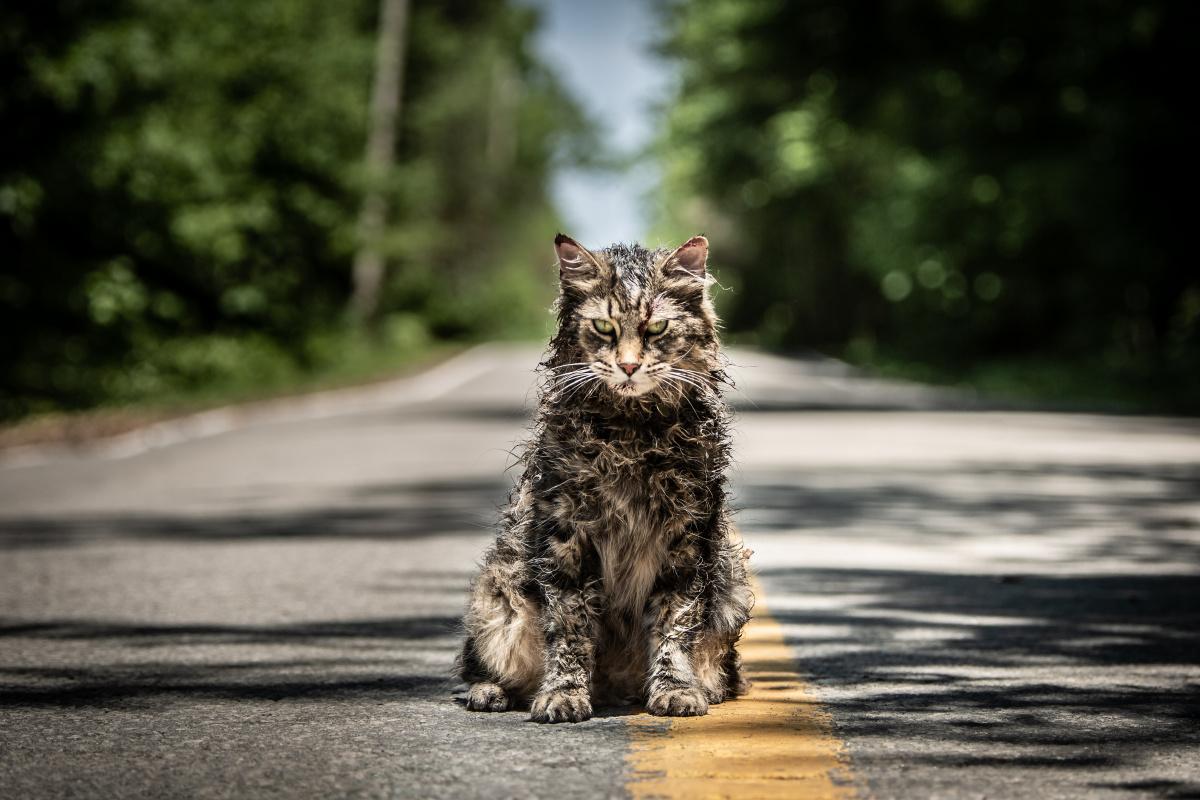Кладбище домашних животных / Pet Sematary (2019)