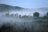 Туман 2010 кадры