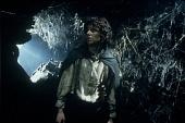 Властелин колец: Возвращение Короля - смотреть онлайн последнюю часть фильма 2003 кадры