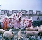 кадр №1 из фильма Принцесса на горошине (1976)