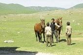 Лошади 2011 кадры