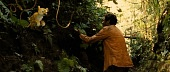 Джунгли зовут! В поисках Марсупилами 2012 кадры