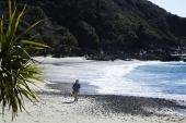 Возвращение на остров Ним 2013 кадры