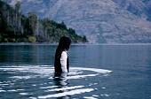 Вершина озера 2013 кадры