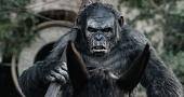 Планета обезьян: Революция 2014 кадры