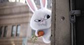 Тайная жизнь домашних животных - семейный мультфильм смотреть онлайн 2016 кадры