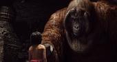 Книга Джунглей - семейный фильм смотреть онлайн 2016 кадры