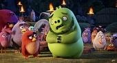 Angry Birds в кино 2016 кадры