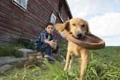 Собачья жизнь 2017 кадры