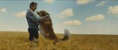 кадр №2 из фильма Собачья жизнь 2