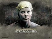 Северная страна